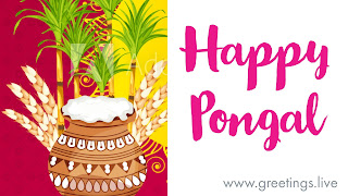 Happy Pongal Festival greetings
