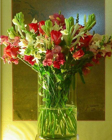 Toko Bunga Rawa Belong Florist Jakarta Indonesia Flower Shop
