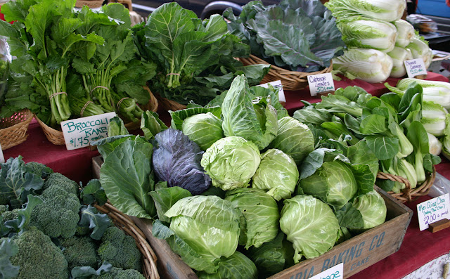 Vegetable Farming and Sale Business