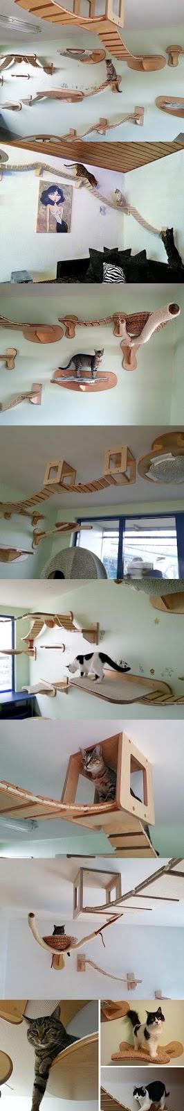 グミのシャンデリア?感性を刺激するクリエイティブな家具#2・9選【a】 猫のキャットウォーク