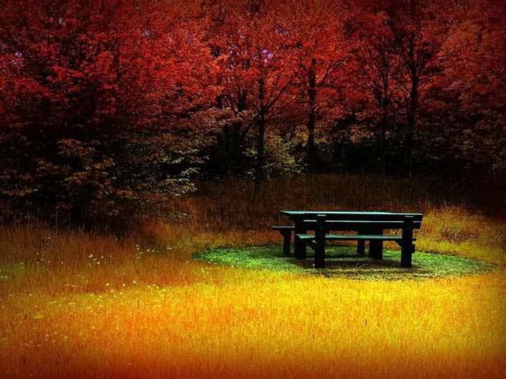 sonbaharda yalnızlık resimleri