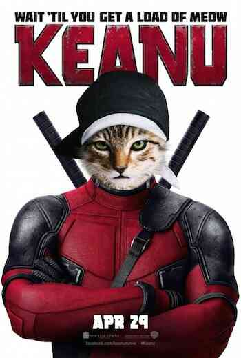 Keanu 2016 Full Movie Download HD 720p 300MB