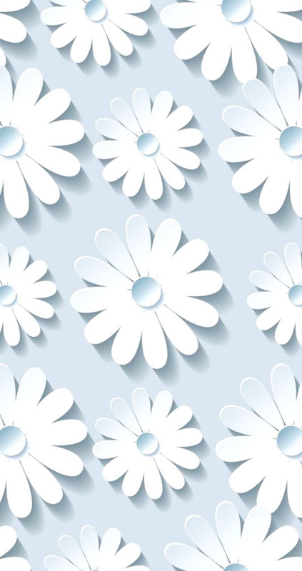 Cute White Flower Pictures Wallpaper Inspiration Wallpapers