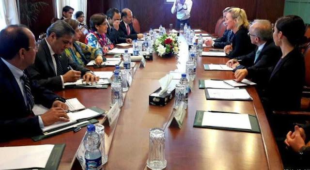 آصف شاہد: دورہٴ پاکستان، ایلس ویلز کی اعلیٰ سیاسی و عسکری عہدیداروں سے ملاقاتیں