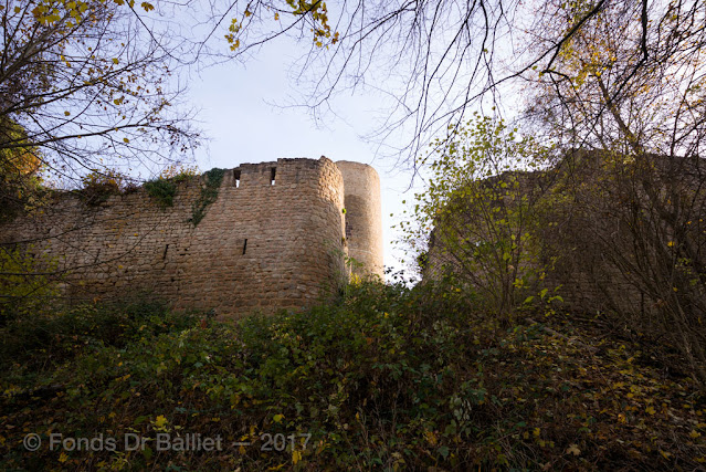 Château du Pflixbourg[2017]