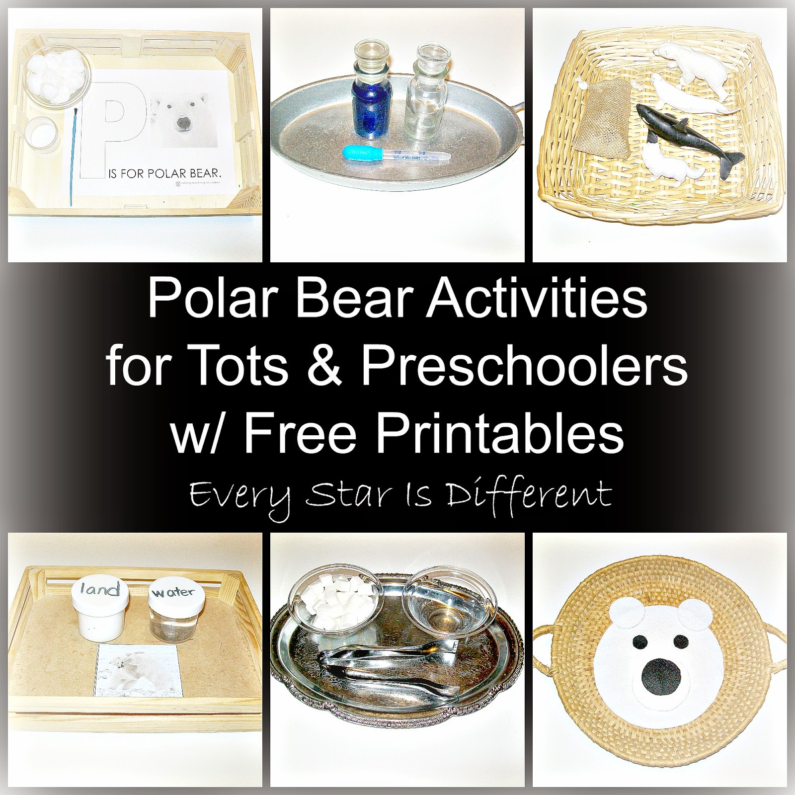Polar Bear Activities for Tots and Preschoolers