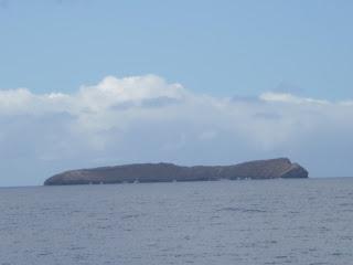 Molikini island near Maui.
