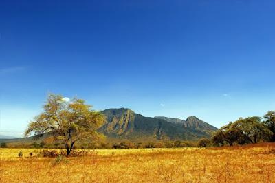 Taman Nasional Baluran - Info Tiket Masuk & Harga Penginapan Lengkap