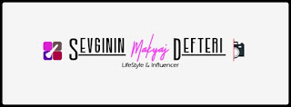 blog -blogger-