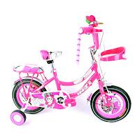 12 bnb 02 ctb sepeda anak
