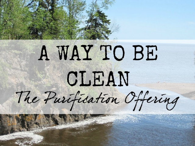God provides a way for us to be clean: the purification offering