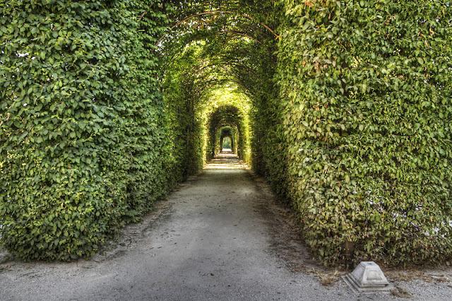 Fotografia dei giardini della Reggia di Colorno, particolare