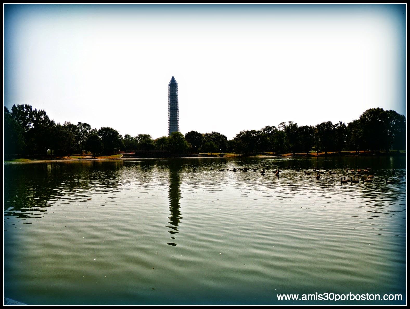 Constitution Pond