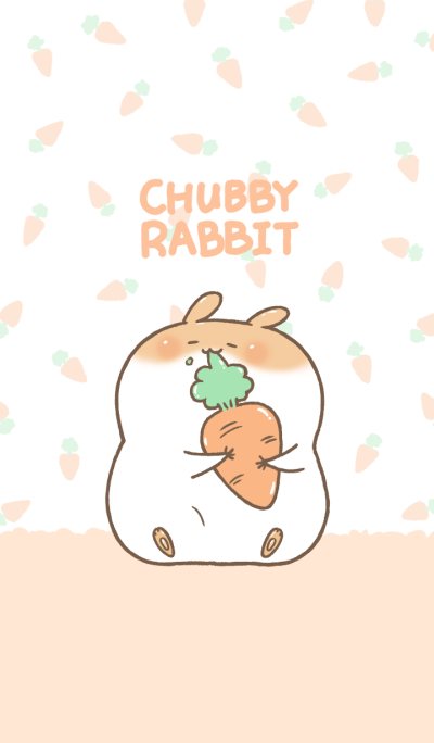 Chubby Rabbit-I like carrots