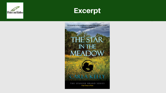 Excerpt: The Star in the Meadow by Carla Kelly
