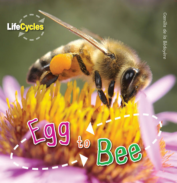 https://www.quartoknows.com/books/9781682970324/Egg-To-Bee.html