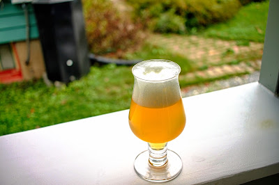 A glass of Saison with Hops and Honey from New Zealand