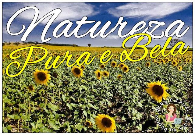 Natureza Pura e Bela - Desafio Fevereiro Nathy Borrelly