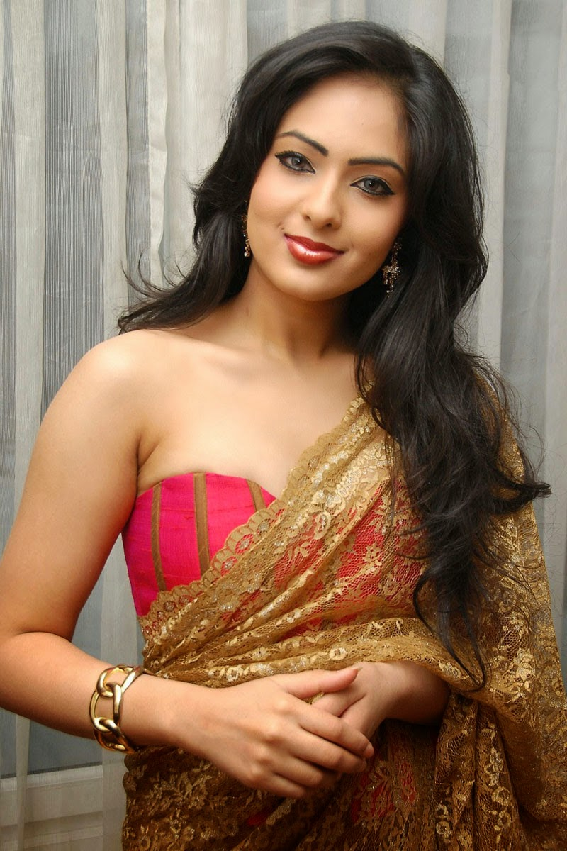 Nikesha Patel Hot Transperent Saree Pictures  Nikesha -3437