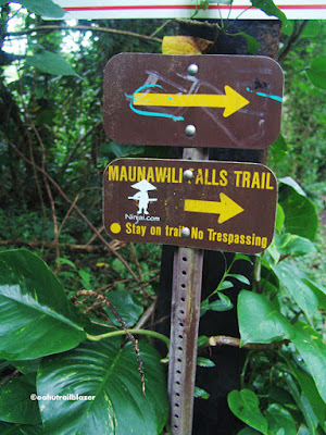 hiking Maunawili Falls trail