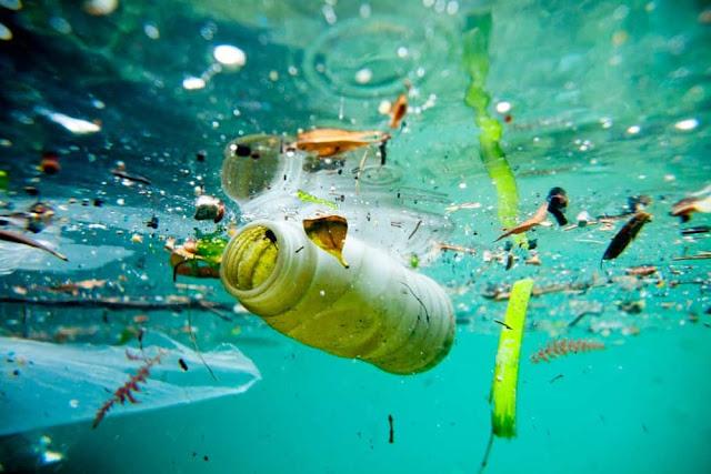 التلوث البيئي و أنواع التلوث
