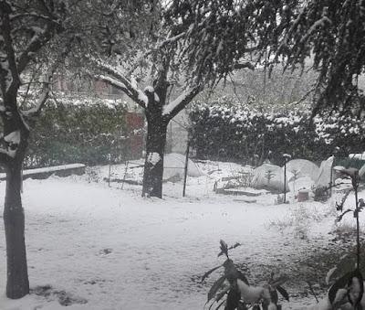 orto-di-marzo-neve