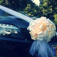 קישוטי רכב לחתונה