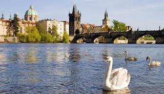 Charles Bridge juga menawarkan pemandangan terbaik Prague Castle, tetapi sekali lagi, Kastil Praha adalah hati dari setiap sudut. Dengan megah outlook tebing-atas dan skala menakjubkan yang memenuhi syarat sebagai kastil kuno terbesar di dunia, Kastil Praha adalah pusat politik dan bersejarah kota. Menghabiskan setengah hari kagum sini untuk tur Spanyol Hall, Rudolf Galeri dan Katedral St. Vitas, tetapi hanya jika Anda memiliki kekaguman meninggalkan luang.
