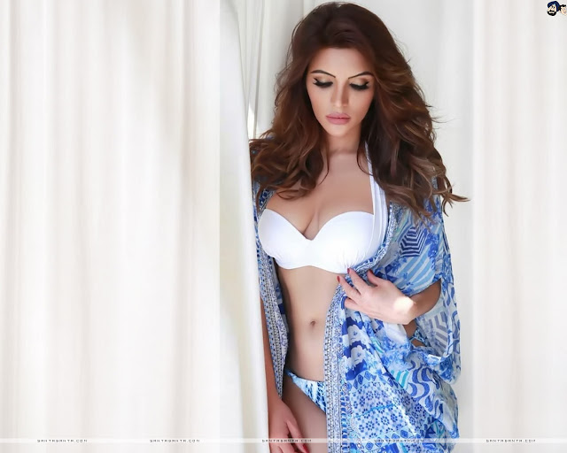 Shama Sikander HD Wallpapers