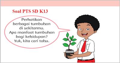 Soal PTS/UTS Semester 1 Kelas 4, 5, 6 SD K13 Revisi dan Jawaban 2018/2019