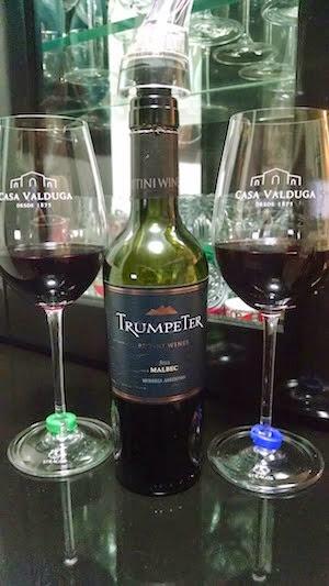 Vinho Tinto Argentino Malbec 2012
