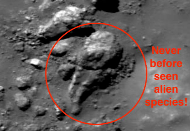 UFO SIGHTINGS DAILY Alien Spaceship On The Moon