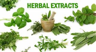 Jika anda ingin mendapatkan obat herbal