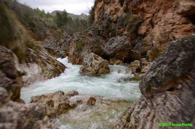 Fotos de Josep Puche 4