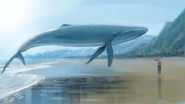 balena albastra joc sinucidere adolescenti