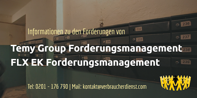 Temy Group Forderungsmanagement   FLX EK Forderungsmanagement
