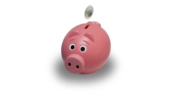 celengan babi