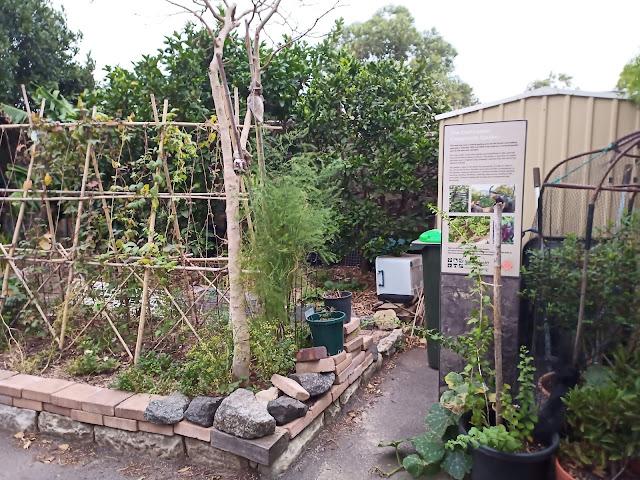 Garden outside Old Caretaker's Cottage