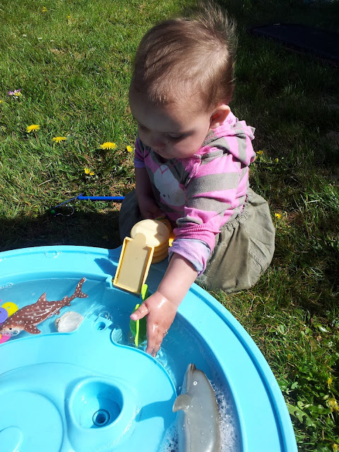 Matilda Mae's Messy Play Water Table Seaside Animals Turtles