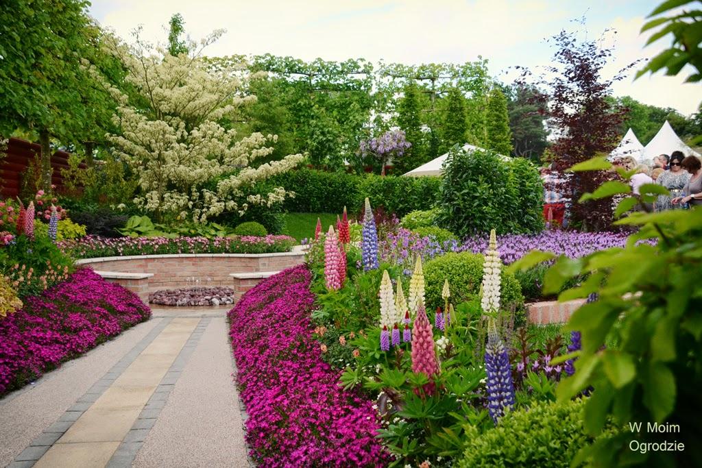 ogród kolorów
