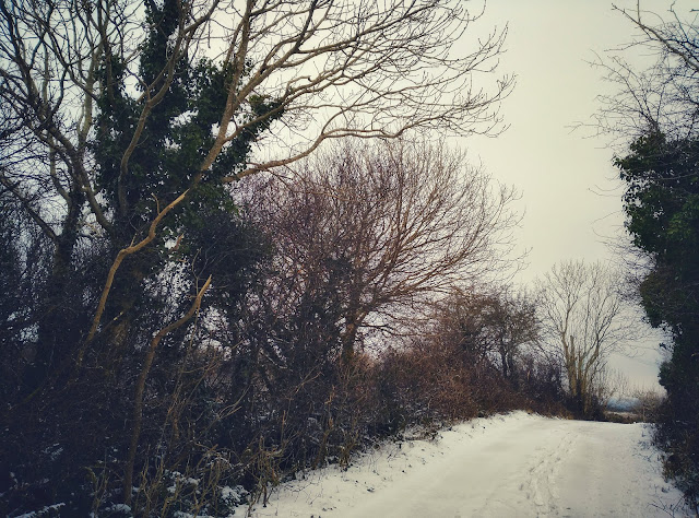 snowy landscape, Connemara, Ireland