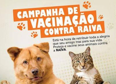 Campanha de vacinação contra a raiva atingiu a meta do Ministério na Ilha Comprida
