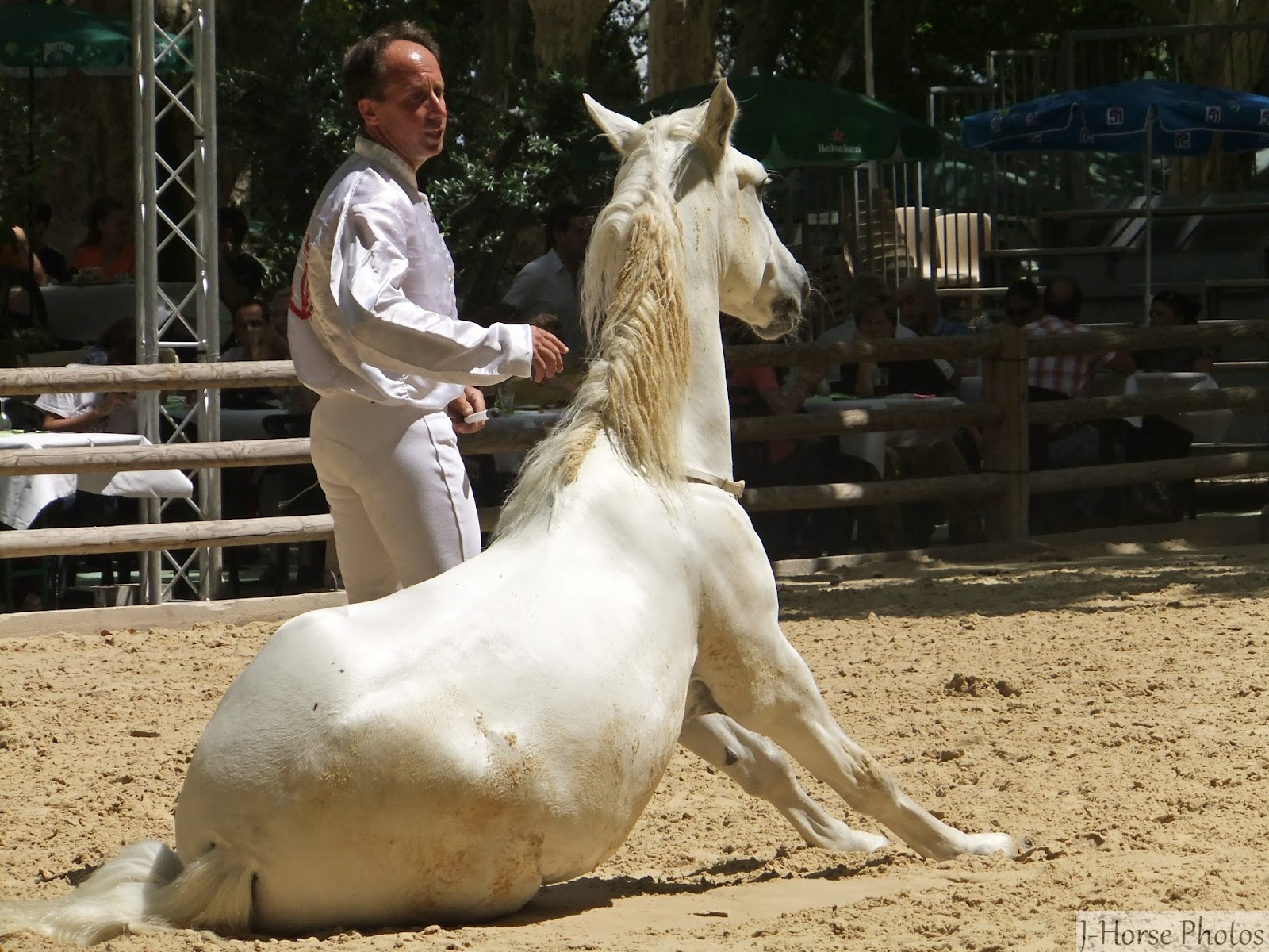 Beaucaire rencontres equestres mediterraneennes 2018