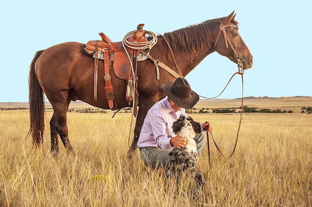 Image: Cowboy, with his Horse and Dog, by Lisa Johnson on Pixabay