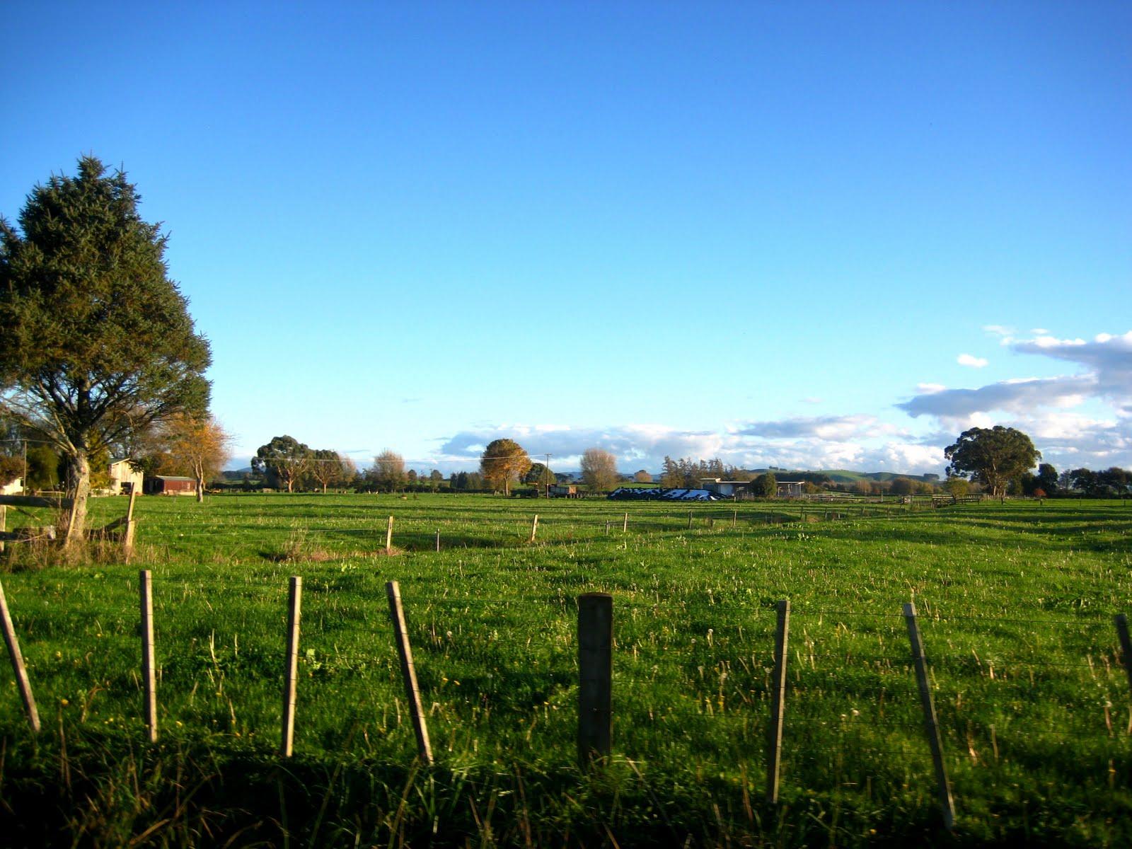 Christchurch Wallpaper: Pin Countryside-christchurch-wallpapers-wallpaper-travel