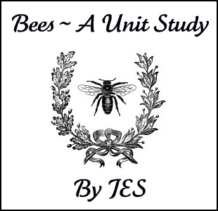 Strangers & Pilgrims on Earth: Bees ~ A Unit Study
