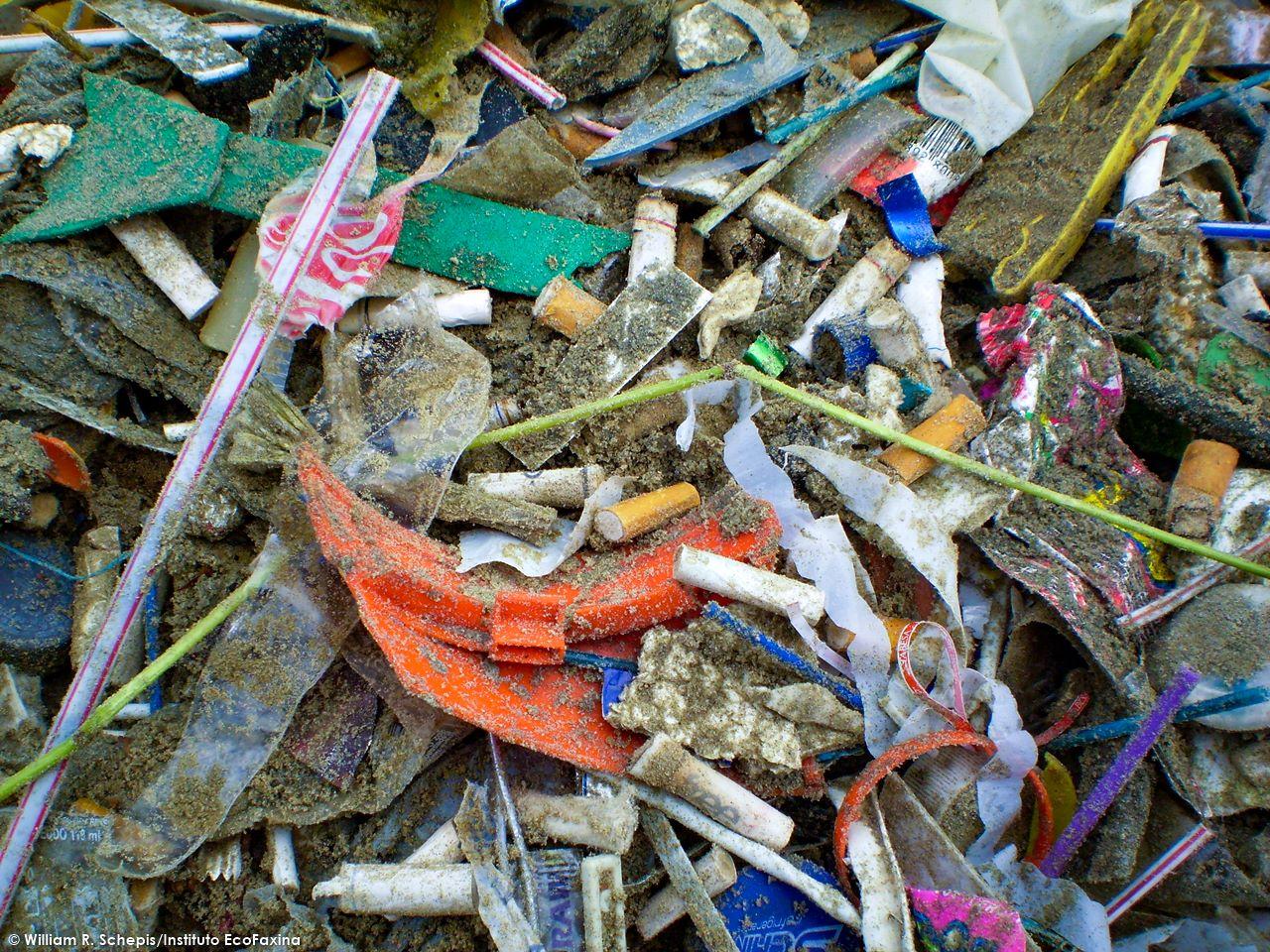"""Além do aspecto ruim que ele dá às praias da região, o microlixo causa graves prejuízos à vida marinha, transfere poluentes químicos para o ambiente e pode ser ingerido por diversas espécies, incluindo aves, peixes, tartarugas e mamíferos. """"Nanolixo"""" - Novos estudos mostram que partículas submicroscópicas de plástico, observadas somente através de microscópio eletrônico, representam uma ameaça de poluição até então desconhecida."""