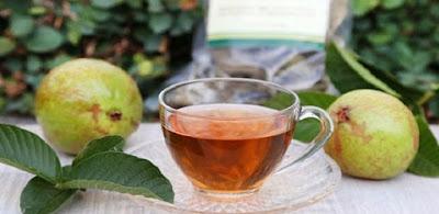 cara merebus daun jambu biji, cara membuat teh daun jambu biji