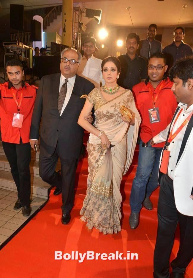 , Sridevi in Saree at SIIMA Awards 2014