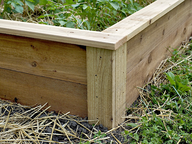 Architectural Western Red Cedar Raised Beds for Minnesota Gardens